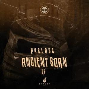 PabloSA & TorQue MuziQ – The Tunnel (Afro Mix)