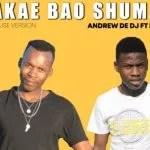 Andrew De DJ – Bakae Bao Shuma ft De Fillips (Original)