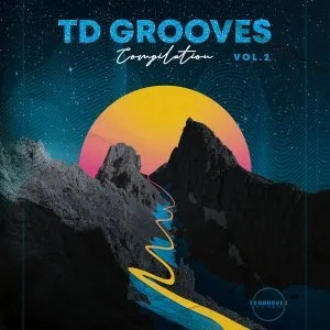 Various Artists – TD Grooves Records Compilation Vol. 2