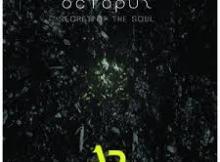 DJ Octopuz Secret Of The Soul (Original Mix) Mp3 Download