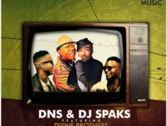 DOWNLOAD Dns, DJ Sparks & Dvine Brothers Gold Digger EP ZIP