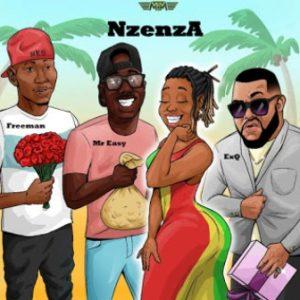 ExQ, Freeman & Mr Easy Nzenza Remix Mp3 Download