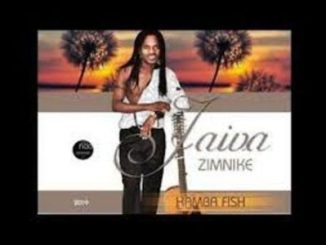 Jaiva Zimnike Hamba Fish (2019 Single) Mp3 Download