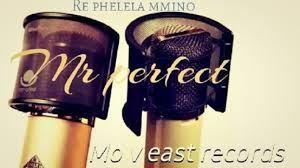 DOWNLOAD Mr Perfect & Hapas MusiQ Who Is Mr Perfect (Gwam Mix) Mp3