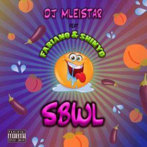 DJ Mleistar ft Fabiano Isdirane Sbwl (Dj Aplex Remix).