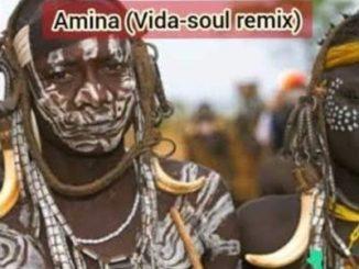 Jaguar Paw ft. Idd Aziz Amina (Vida Soul Remix) Mp3 Download