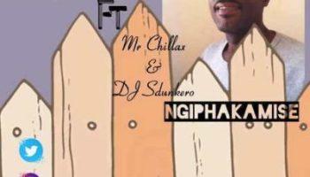 Mr T Ft Mr Chillax & DJ Sdunkero Ngiphakamise Mp3 Download
