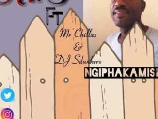 Mr T Ft Mr Chillax & DJ Sdunkero Ngiphakamise Mp3 Download