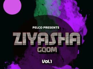 DJ Pelco Ziyasha Gqom Vol 1 Mp3 Download