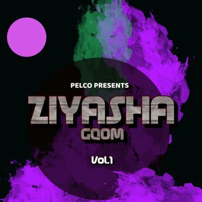 DJ Pelco Ziyasha Gqom Vol 1 Mp3 Download