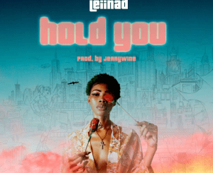 Leiinad Hold You Mp3 Download