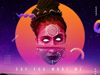 Skindeep Say You Want Me ft. Dee Cee Mp3 Download