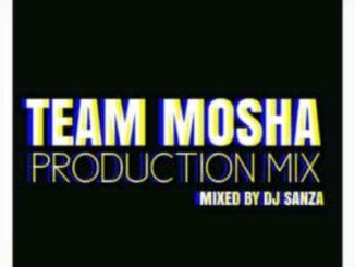 DJ Sanza Team Mosha Production Mix Mp3 Download