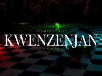 Element Boyz Kwenzenjani (For Malume) Mp3 Download
