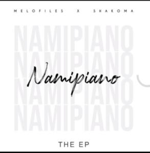 Melofiles & Shakoma The One Ft. Dwayne & Milla Mp3 Download