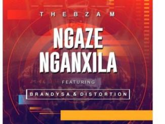 Thebza M Ngaze Nganxila Ft. BrandySA & Distortion Mp3 Download