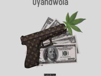 Mshimane & Ara Yizanayo Uyandwola Mp3 Download