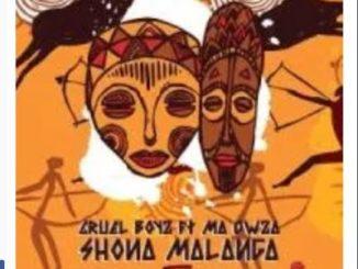 Cruel Boyz Shona Malanga Mp3 Download Ft. Ma Owza Fakaza