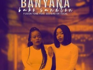 Fusion Tone Banyana Bako Sandton Mp3 Download Fakaza