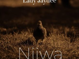 Lady Jaydee Njiwa Mp3 Download