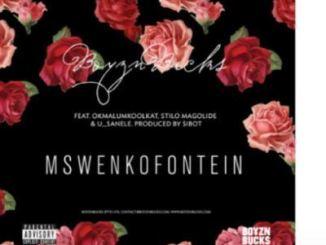 Boyzn Bucks Mswenkofontein Mp3 Download