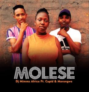 Dj Mimmz Africa Indlela Zami Mp3 Download Fakaza