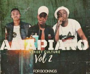 Entity MusiQ & Lil'Mo Amapiano Street Culture Vol. 2 Mix Mp3 Download Fakaza