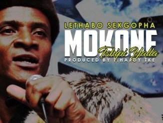 Download Lethabo Sekgopha Mokone Mp3 Fakaza