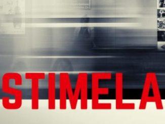 Lizwi Stimela (Parcel Remix) Mp3 Download Fakaza