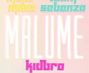 Major Mniiz & Team Sebenza Malume Mp3 Download Fakaza