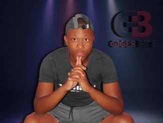 DOWNLOAD DJ Aplex SA Isikhalo Sabaphantsi Ft. Bobstar no Mzeekay Mp3 Fakaza