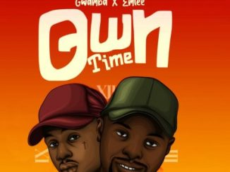 DOWNLOAD Gwamba Own Time Ft. Emtee Mp3 Fakaza
