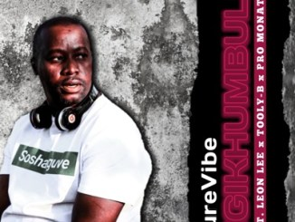 DOWNLOAD PureVibe Ngikhumbule Ft. Leon Lee, Tooly B & Pro Monate Mp3