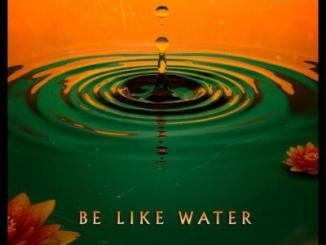 DOWNLOAD RZA Be Like Water Mp3 Fakaza