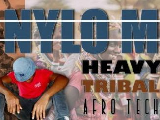 DOWNLOAD Nylo M Heavy Tribal (Afro Tech) Mp3