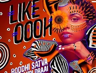 Boddhi Satva & Thandi Draai Like Oooh Mp3 Fakaza Download