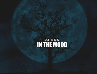 DOWNLOAD DJ NGK Am In The Mood (AfroDrum Mix) Mp3 Fakaza