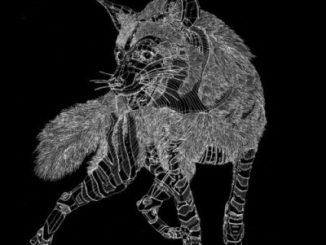 DOWNLOAD Hyenah & Lazarusman Not Enough (Original Mix) Mp3 Fakaza