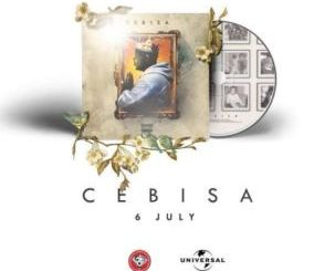 Zakwe Ngiyabonga Video Fakaza Download