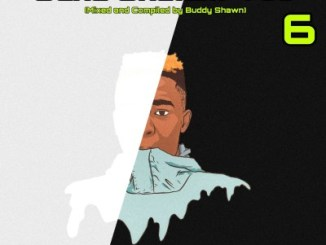 Fakaza Music Download Buddy Shawn Saka Skelem Vol.6 (Thato's Birthday Mix) Mp3