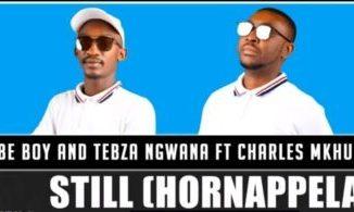 Fakaza Music Download Tsebe Boy & Tebza Ngwana Still Mp3