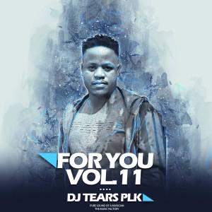 DJ Tears PLK For You Vol.011 Album Zip Download Fakaza