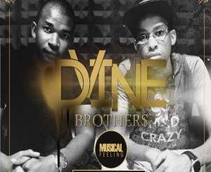 Fakaza Music Download Dvine Brothers Musical Feeling Album Zip