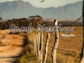 Fakaza Music Download Muziqal Tone Umculo Wasekhaya EP Zip