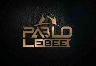 Fakaza Music Download Pablo Le Bee Pheko Ya Badimo Mp3