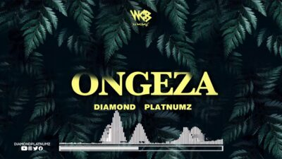Diamond Platnumz Ongeza Mp3 Download