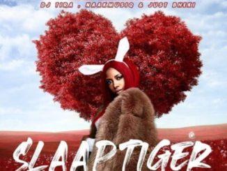 Gigi Lamayne Slaap Tiger Mp3 Download Fakaza