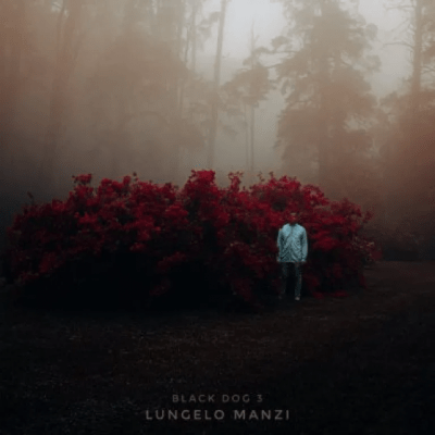 Lungelo Manzi Closure Mp3 Download Fakaza