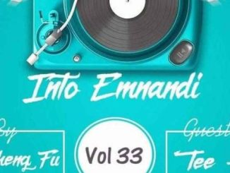 Master Cheng Fu Into Emnandi Vol 33 Mp3 Download Fakaza