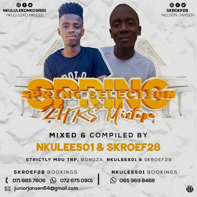 Nkulee 501 & Skroef28 Spring Selection Mix Mp3 Download Fakaza